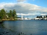 Hidden Gem: Shoal Harbour BirdSanctuary