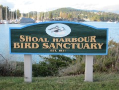 Shoal Harbour Bird Sanctuary